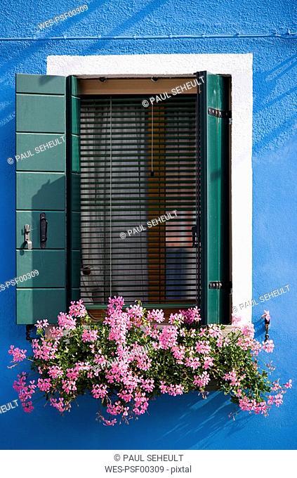 Italy, Venice, Burano, Window, Flower box with geranium flowers