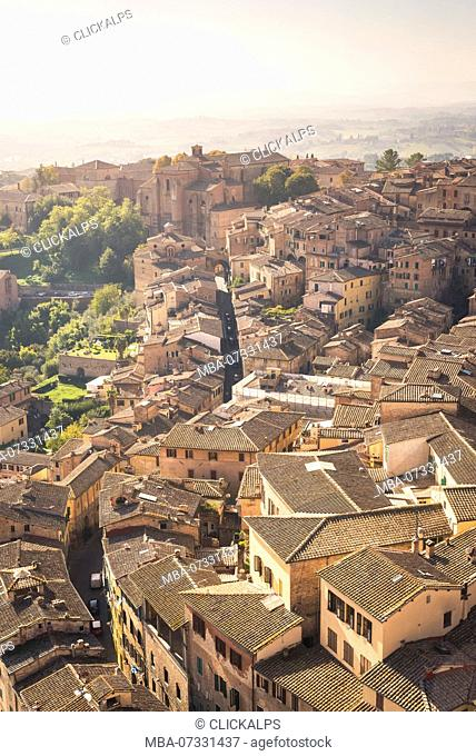 Italy, Tuscany, Siena district. Siena. View of Siena from Del Manga's Tower