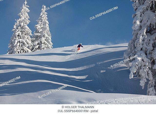 Snowboarder, Brixental, Austria