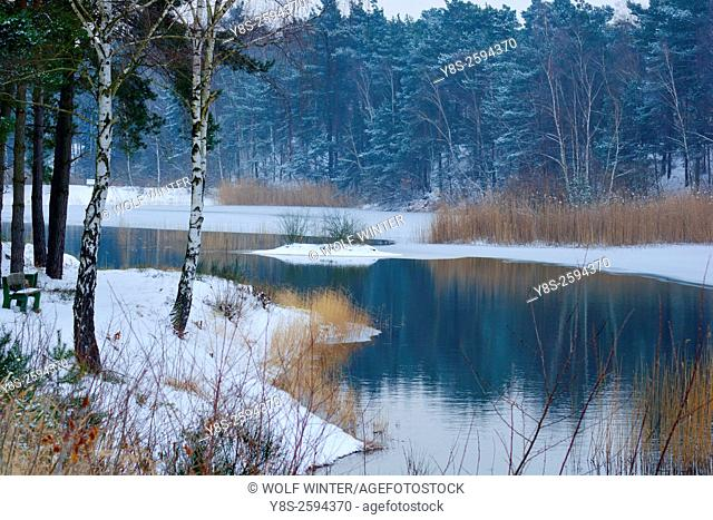 Half frozen Lake. Gifhorn. Germany