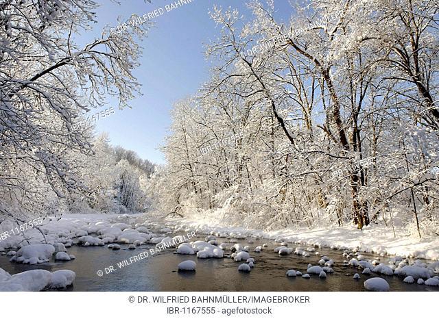 Winterly snowy river, Mangfall near Louisenthal, near Tegernsee lake, Bavaria, Germany, Europe