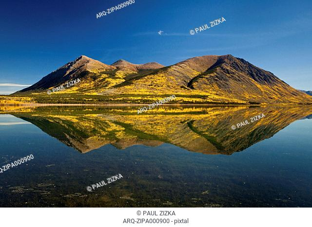 Nares Lake Reflection In The Fall In Carcross, Yukon, Canada
