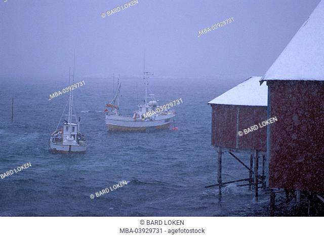 Norway, Nordland, Lofoten, Moskenes, coast, boathouses, lake,fisher-boats, blizzard, Scandinavia, coast-proximity, alms, stilt-constructions, waters, ocean