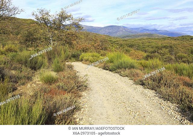 Sierra de Tormantos mountains, near Cuacos de Yuste, view of La Vera valley, Extremadura, Spain