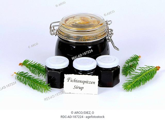 Norway Spruce tip sirup, Picea abies