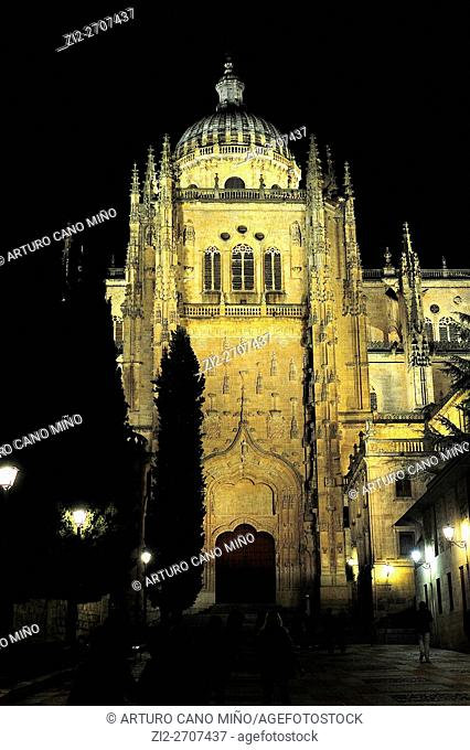 The Old Cathedral of Saint Mary, XII-XIV centuries. Salamanca, Spain