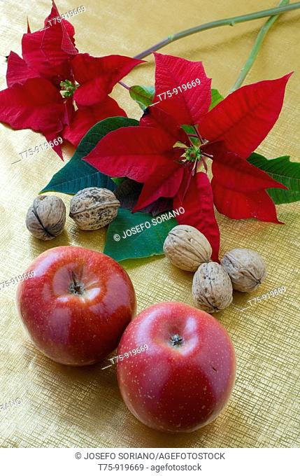 Apples, nuts and poinsettia