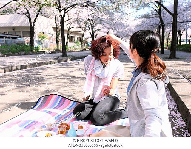 Young multi-ethnic friend enjoying cherry blossoms blooming in Tokyo