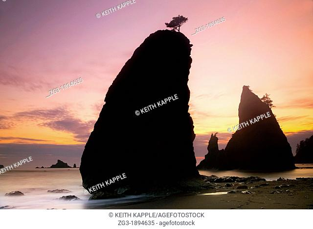 Silhouette of large rocks called Haystacks during Sunset at Rialto Beach, Olympic National Park, Washington, USA