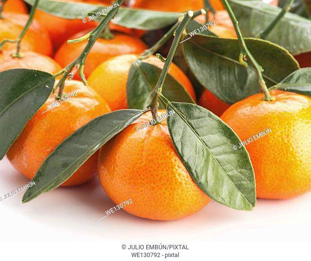 group of tangerines with leaves on white background