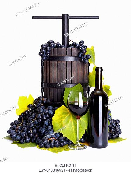 Traditional manual grape pressing utensil with red wine and blue grape bunch