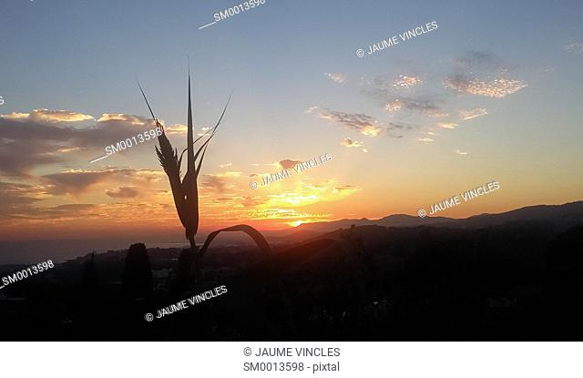 Sunset. Maresme, Barcelona province, Catalonia, Spain
