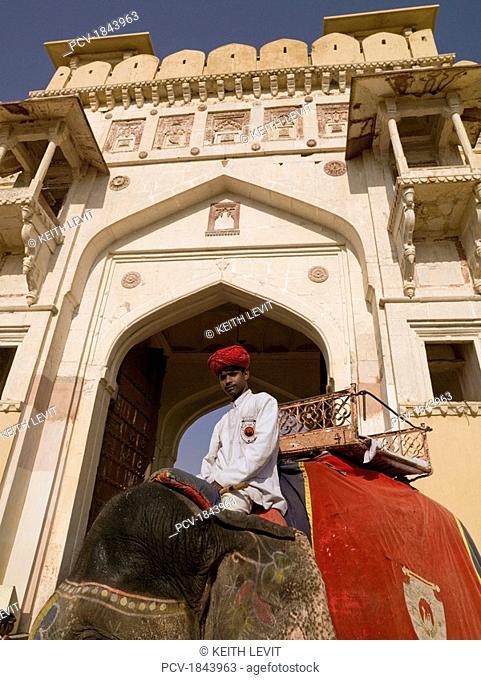 Amber Fort,Rajasthan,India,Man sitting on elephant
