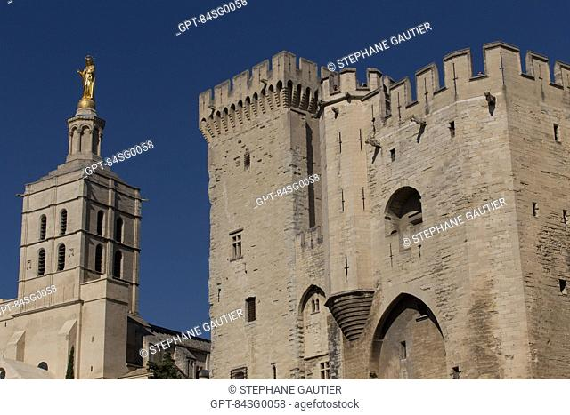 CATHEDRAL NOTRE DAME DES DOMS OF AVIGNON, BUILT IN THE 12TH CENTURY AND ENLARGED IN THE 14TH AND 17TH CENTURIES, MASTERPIECE OF PROVENCAL ROMANESQUE ART LISTED...