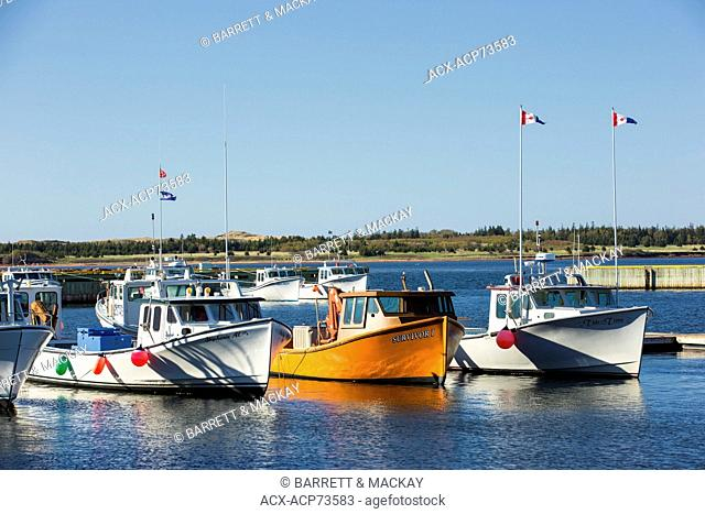 Fishing boats tied up at Red Head Harbour, Morell, Prince Edward Island, Canada