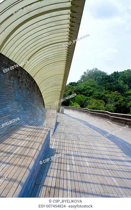 Singapore Henderson wave bridge