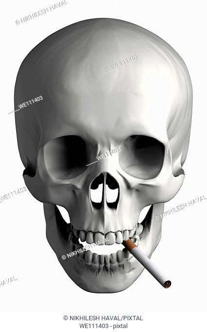 Human skull cigarette