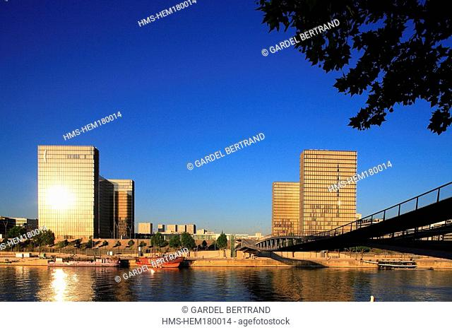 France, Paris, banks of the Seine river listed as World Heritage by UNESCO, National Library of France by architect Dominique Perrault from Passerelle Simone de...