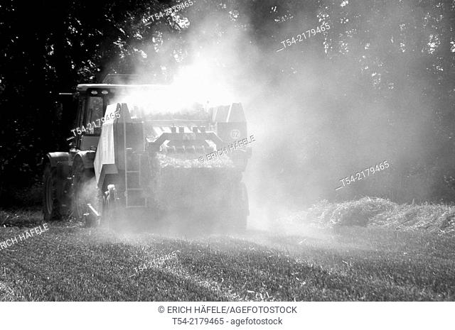 Combine harvester makes dust / Fellheim, Bavaria