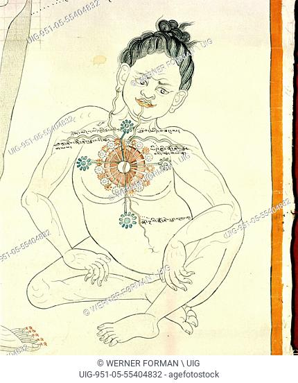 A medical thangka from a version of the commentary on the ancient Four Tantras, the fundamental treatise of Tibetan medicine