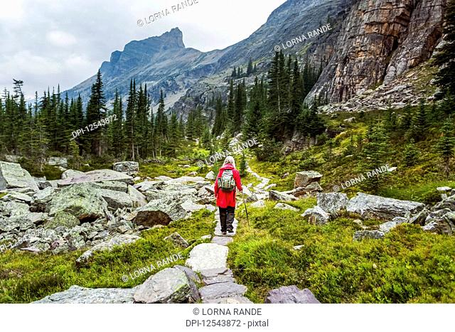 Female hiking into Lake Oesa from Lake O'Hara, Yoho National Park; British Columbia, Canada