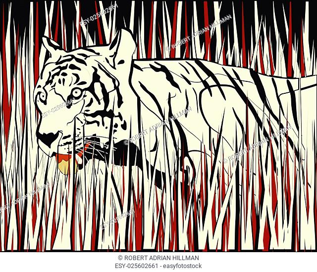 Vector illustration of a tiger prowling through dry grass