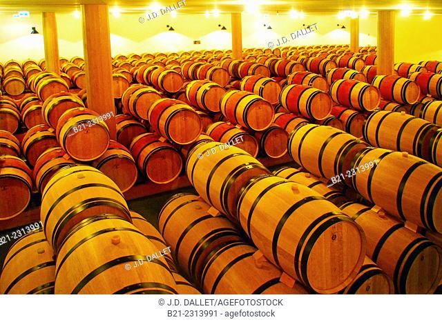 Working in the 'chai' (aging cellar) of Chateau Clerc Milon in the Medoc, Bordeaux wines district, Gironde, Aquitaine, France