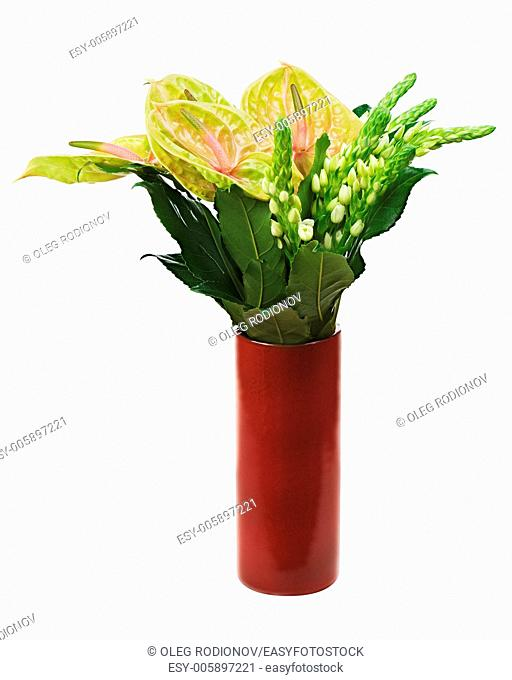 Bouquet from anturium flowers in red vase isolated on white background. Closeup