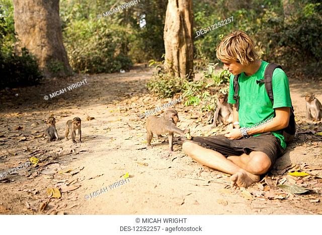 A tourist plays with the wild monkeys that live in the Monkey Forest, located in the Xe Champhone region; Laos