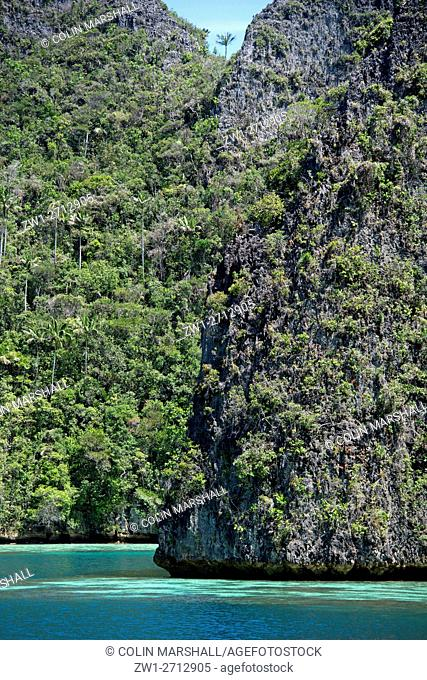 Limestone pinnacles, with trees and exposed cliff, Raja Ampat (4 Kings) area, West Papua, Indonesia
