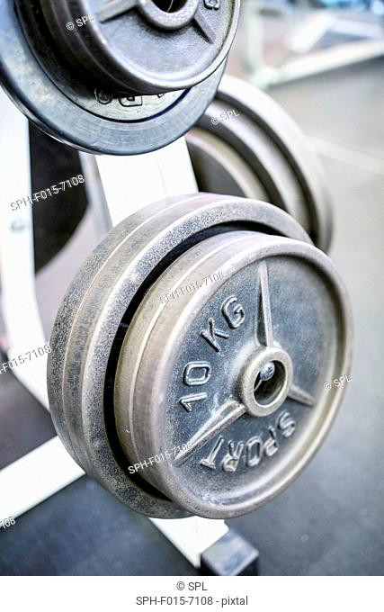 Close-up of weight plates arranged on weight rack