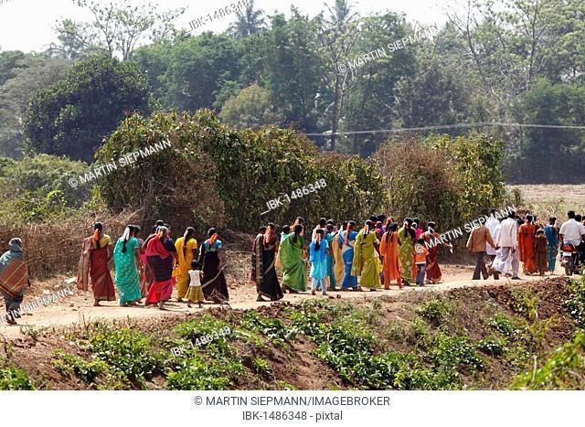 Women in festive saris, festival, south of Hunsur, Karnataka, South India, India, South Asia, Asia