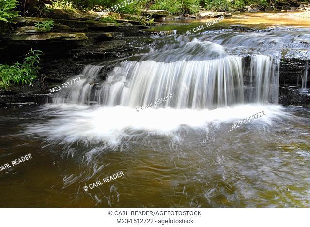 A crashing waterfall at Rickett's Glen State Park, Pennsylvania, USA