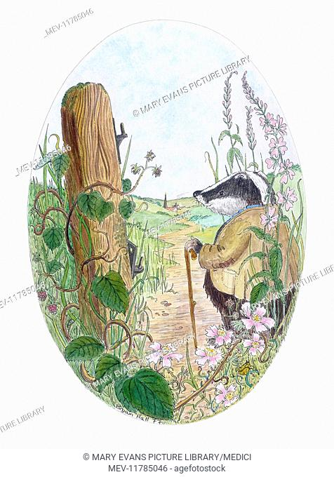 Badger with a walking stick out for a walk on a country lane, with wild flowers and gate post