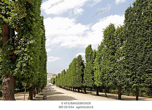 Avenue with view of castle Schoenbrunn, Vienna, Austria