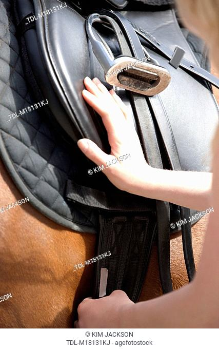 A woman checking the girth on a horses saddle