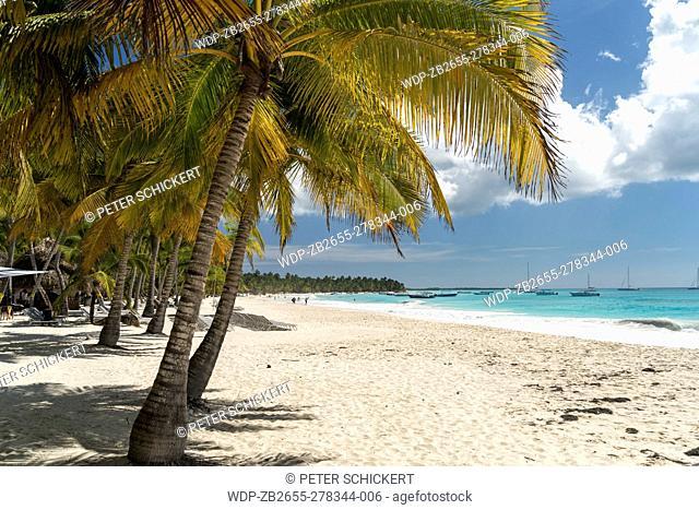 Traumstrand der Karibik Insel Isla Saona, Dominikanische Republik, Karibik, Amerika | dream beach on the Caribbean Island Isla Saona, Dominican Republic