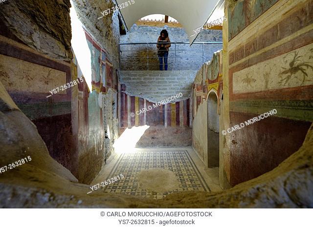 House of the Cryptoporticus, Pompeii the ancient Roman town near Naples, Campania, Italy, Europe