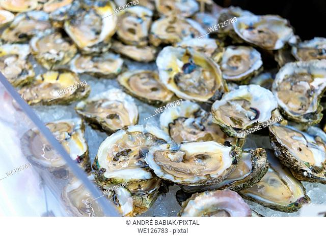 Fresh Oyster Halves on ice for sale at the San Francisco farmers and fishermen market, California, USA