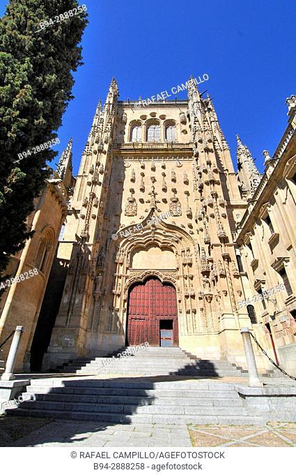 Cathedral, Salamanca, Old Cathedral, Via de la Plata, Silver Route, Castilla-Leon, Spain