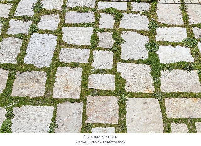 background Pavement with moss