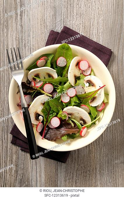 Lettuce with mushrooms and radishes