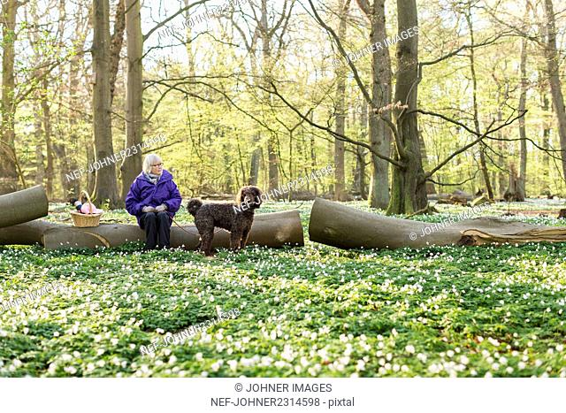 Senior woman with dog in forest
