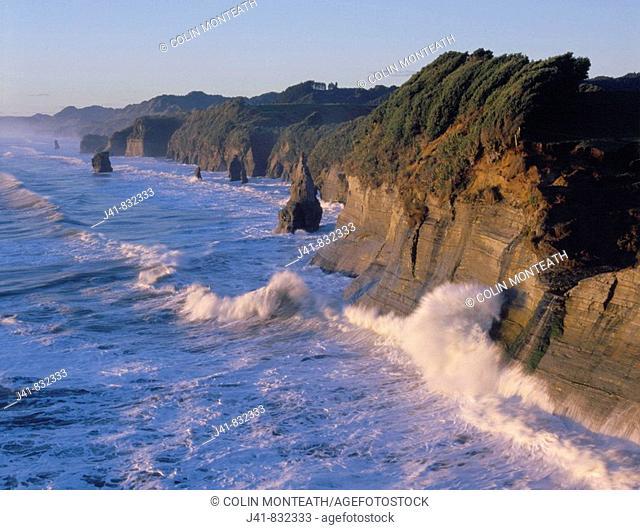 Fertile coastal farmland ends abruptly in sandstone cliffs and stacks at Tongaporutu North Taranaki New Zealand