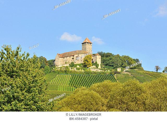 Castle Lichtenberg, Oberstenfeld, Baden-Württemberg, Germany