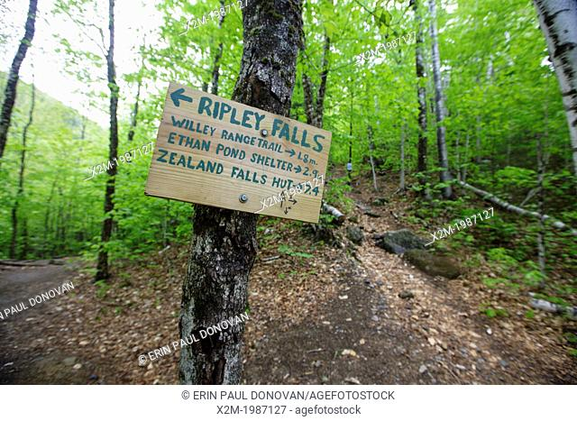 Ethan Pond Trail Sign located in the White Mountain National Forest of New Hampshire USA