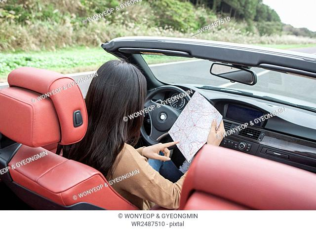 Back portrait of young woman in a car reading a map
