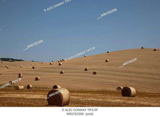 Italy, Tuscany, Orcia Valley, Bale of straw on stubble field