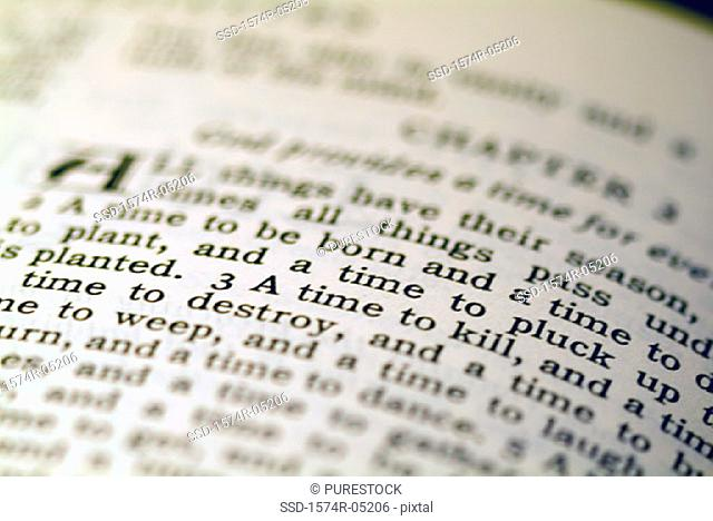 Close-up of text in the Bible