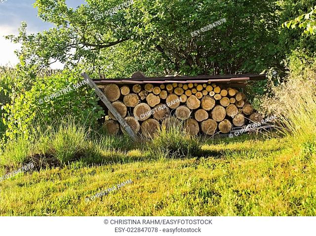 Logs for firewood collection protected under metal roof in green grass in sunshine, Varmland, Sweden